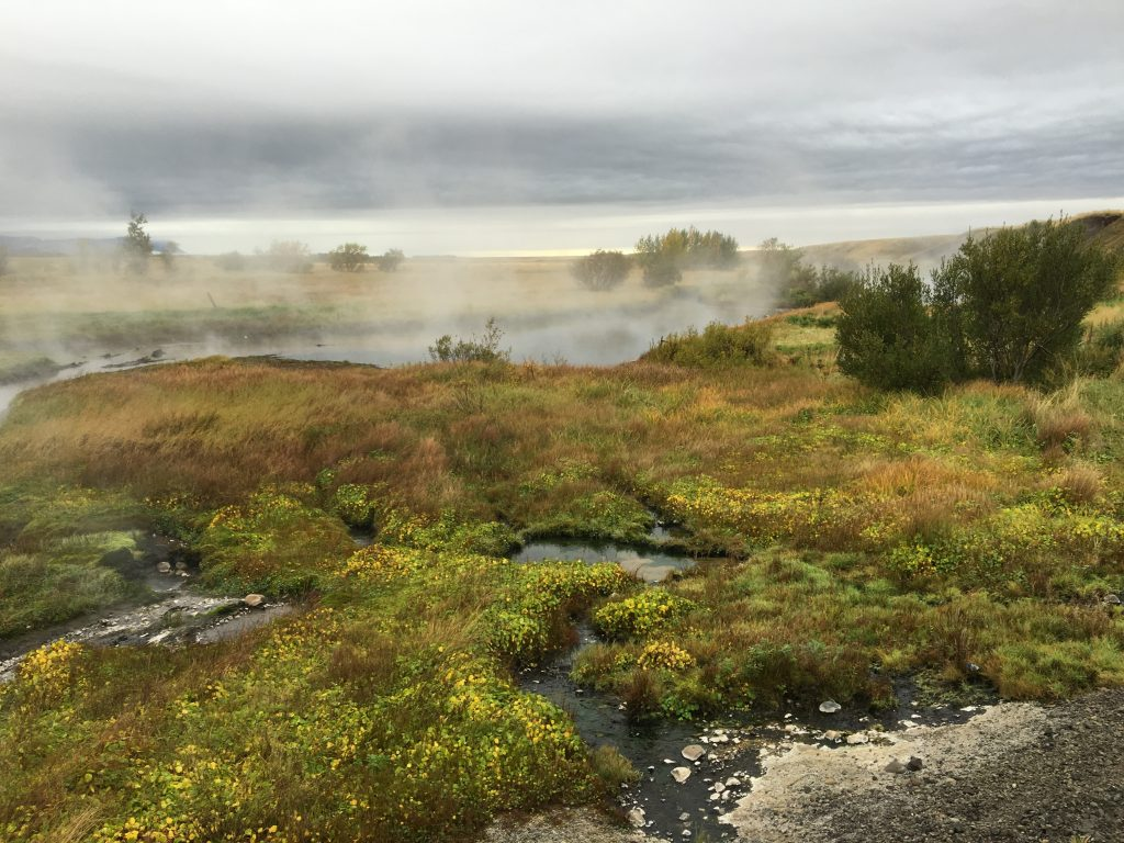 Yet another geothermal area of Iceland!