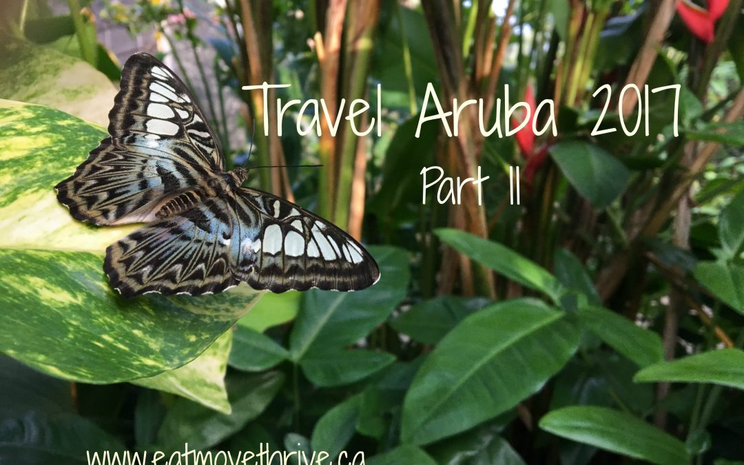 Travel Aruba 2017 – Part 2